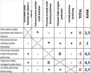 Tabel-1_Urutan Daftar Masalah